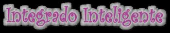 int-inteligente-didcatica-matematicas